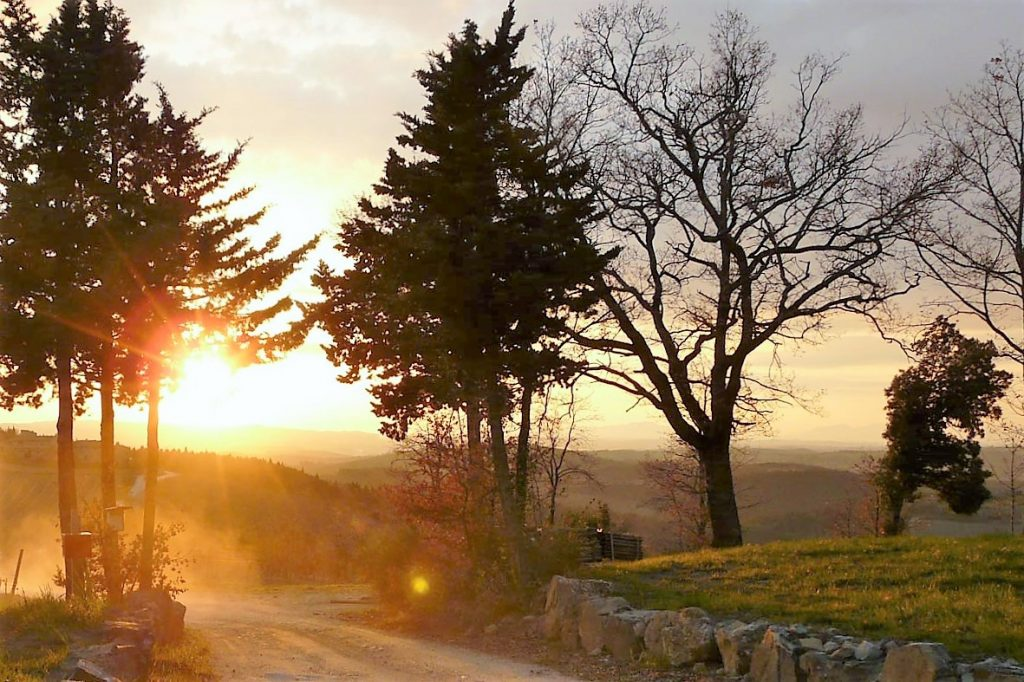 The sunset roads of Tuscany